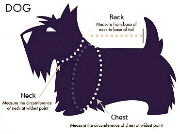 DOGS SIZE CHART