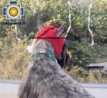 Alpaca Hat for Dogs scottish elf - Product id: dog-clothing-11-02 Photo01