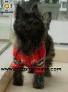 Dog Alpaca Sweater Sumaq - Product id: dog-clothing-10-04 Photo03