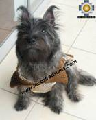 Dog Turtle neck sweater Brown - Product id: dog-clothing-10-06 Photo01