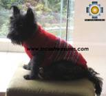 Dog Turtle neck sweater red - Product id: dog-clothing-10-07 Photo04