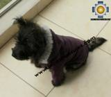 Dog Jacket with Hood ROBIN - Product id: dog-clothing-10-01 Photo03
