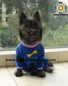 Dog Sleepwear Huesitos - Product id: dog-clothing-10-03 Photo01