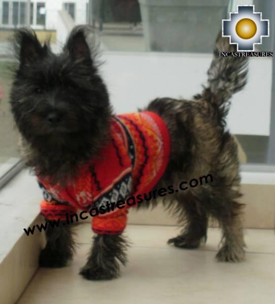 Dog Alpaca Sweater Sumaq - Product id: dog-clothing-10-04