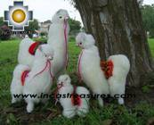 Alpaca Stuffed Animals llama Family - Product id: TOYS08-40 Photo08