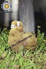 Alpaca Llama Suqui