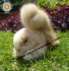 Alpaca Stuffed Animal Squirrel Nuez - Product id: TOYS08-57 Photo05