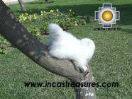 Cute Little White cat - PASCO - Product id: TOYS08-24 Photo03
