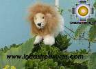 Baby Alpaca Beige King Lion - George , photo 01