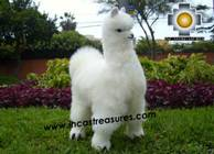 Alpaca Stuffed Animal Llama - Llamona - Product id: TOYS08-60 Photo04