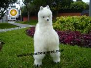 Alpaca Stuffed Animal Llama - Llamona - Product id: TOYS08-60 Photo03