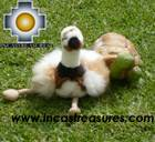 Cute and Elegant Ostrich - Puqui , photo 06