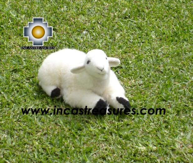 Baby Alpaca Cute little sheep Dolly